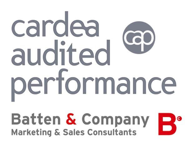 Photo of Batten & Company für exzellente Beratungsqualität ausgezeichnet
