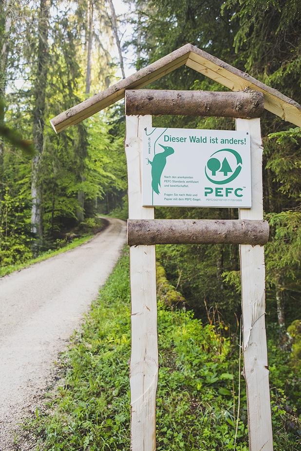 Photo of Nachhaltige Waldbewirtschaftung mit vereinten Kräften vorantreiben