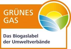"Quellenangabe: ""obs/Grüner Strom Label e.V."""