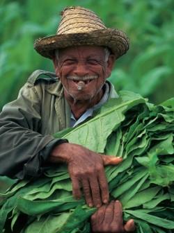 """Quellenangabe: """"obs/alltours flugreisen gmbh/Fremdenverkehrsamt Kuba"""""""