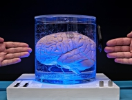 MenschMaschine-Visionen: Technik, die unter die Haut geht