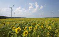 Besserer Strom für Elektroautos – Welche Anbieter sind wirklich CO2 neutral?