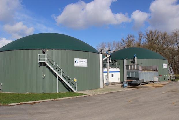 Bild von WELTEC BIOPOWER baut 500kW Biogasanlage für Gemüseproduzenten
