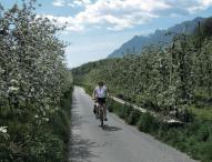 Gemütlich per Rad an den Gardasee