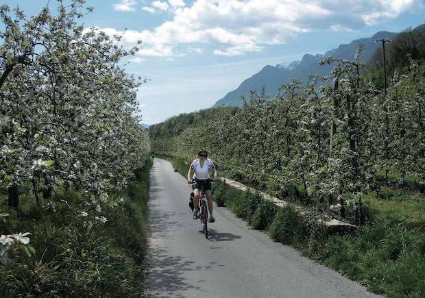 Photo of Gemütlich per Rad an den Gardasee
