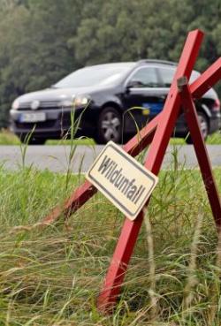 Foto: djd/Volkswagen Financial Services/Gundolf Renze-Fotolia.com