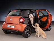 Ideal für Hunde: smart forfour mit readyspace Sitzen