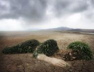 Konsequente Maßnahmen zur Reduzierung von Treibhausgasen jetzt