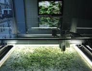 Eine Ausstellung am ZKM Karlsruhe zeigt die Erweiterung unserer Welt