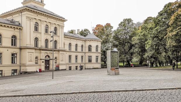 """Photo of Junges Dresdner Start-up mit """"grünem"""" Geschäftskonzept international erfolgreich"""