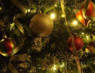 Verband Natürlicher Weihnachtsbaum gegründet