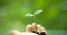 3M zählt weltweit zu den nachhaltigsten Lieferanten