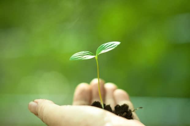 Photo of 3M zählt weltweit zu den nachhaltigsten Lieferanten