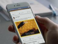 Instant Articles – Facebook wird personalisierte Zeitung!