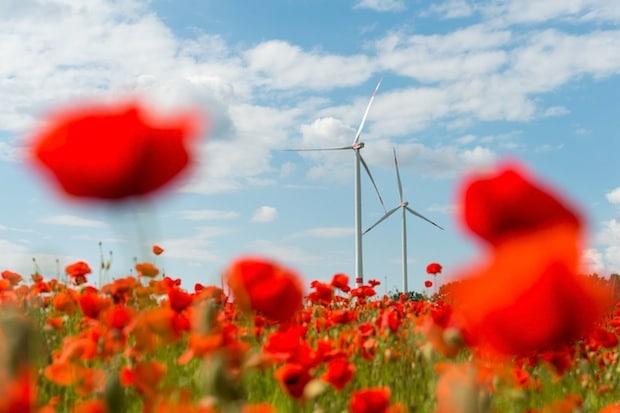 Bild von Projekt-Portfolio des Kraftwerkspark III von Green City Energy um Solar- und Wasserkraftwerke erweitert