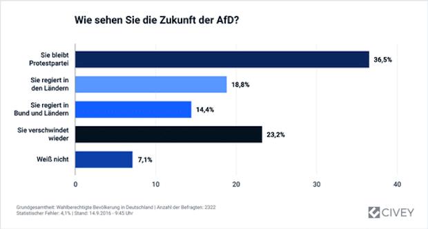 Bild von Deutschland gespalten über die Zukunft der AfD