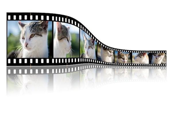 Photo of Präsentationsvideos: Eine gute Möglichkeit der Unternehmensvorstellung