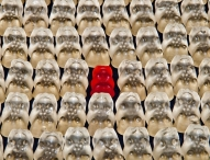Warum Individualität so wichtig ist