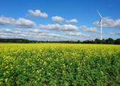 Wie die Zukunft von Unternehmen vom Energiepreis abhängt