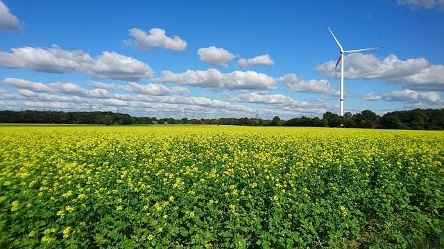 Bild von Wie die Zukunft von Unternehmen vom Energiepreis abhängt