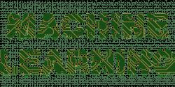 Machine Learning - Herausforderungen bei Effizienz und Kosten meistern