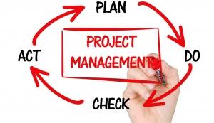 Integrierte Systeme im Projektmanagement – Projektsteuerung in Echtzeit
