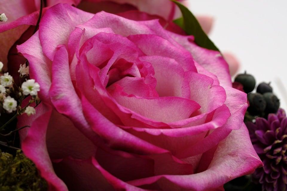 Bild von Blumensträuße online kaufen: Fachhändler im Preisvergleich