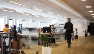 Großraumbüro statt Einzelzelle: So klappt's im Open Office