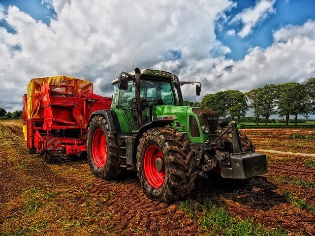 Bild von Trends in der Agrikultur, welcher Anbau lohnt sich und was brauche ich dafür?