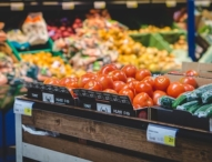Lebensmittelmotten ohne Chemie bekämpfen