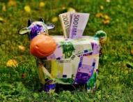 Wie Sparer den Niedrigzinsen trotzen können