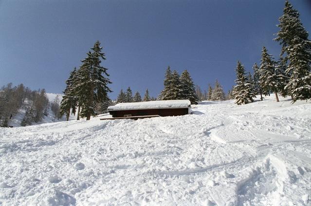 Bild von Mit dem Ski abseits der Pisten unterwegs