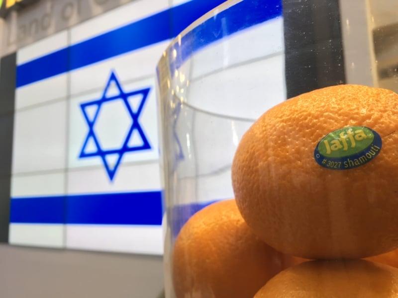 Wirtschaftsfaktor Landwirschaft: Israel und seine Jaffa Orangen. Mit den süßen Südfrüchten lockt Israel Touristen zur Wiege der Weltreligionen ein.