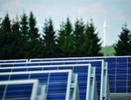 Green Economy: So geht nachhaltiges Wirtschaften
