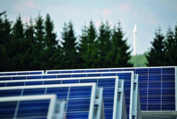 Photo of Green Economy: So geht nachhaltiges Wirtschaften