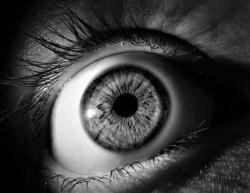 Die Spannweite möglicher Augenkrankheiten ist sehr breit.