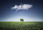 Vier Maßnahmen zum Schutz in der Public Cloud