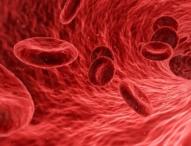 Neue Technik erlaubt einfaches Messen des Sauerstoffgehalts im Blut