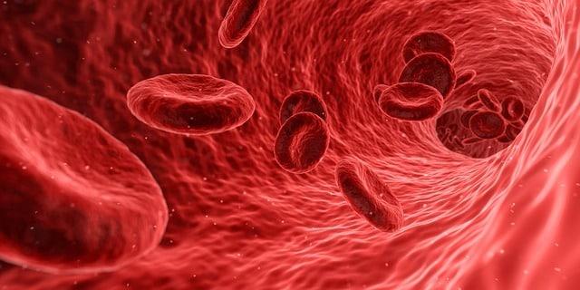 Photo of Neue Technik erlaubt einfaches Messen des Sauerstoffgehalts im Blut