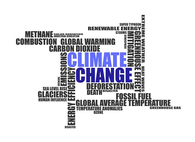 Photo of Das Klimapaket und seine Auswirkungen auf den Autohandel