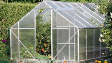 Photo of Sommerzeit ist Gartenzeit: DIY-Gewächshaus
