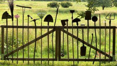 Photo of Wenn Gartenwerkzeuge online gekauft werden: 7 nützliche Tipps für Verbraucher