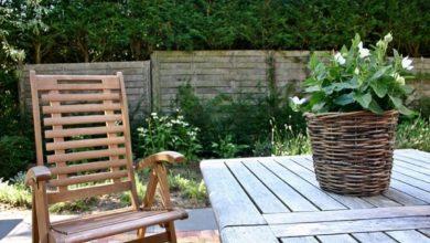 Bild von Gartenmöbel: Ist massives Teakholz empfehlenswert?