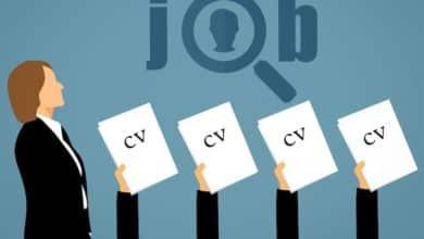 Bild von Mit einem professionellen Lebenslauf erhöhen Sie Ihre Jobchancen
