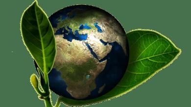 2020-10-29-Nachhaltigkeit