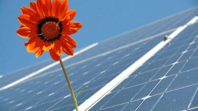 2021-08-16-Photovoltaikanlagen
